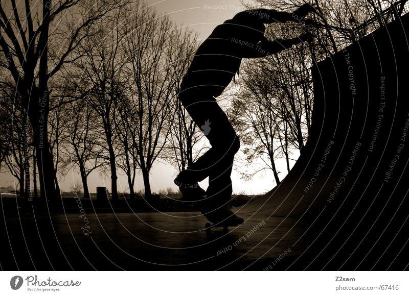 moonlight_nosewheelie Skateboarding Halfpipe Nacht Dämmerung Gegenlicht Rampe Sport Zufriedenheit Abend Schatten Holzbrett Funsport