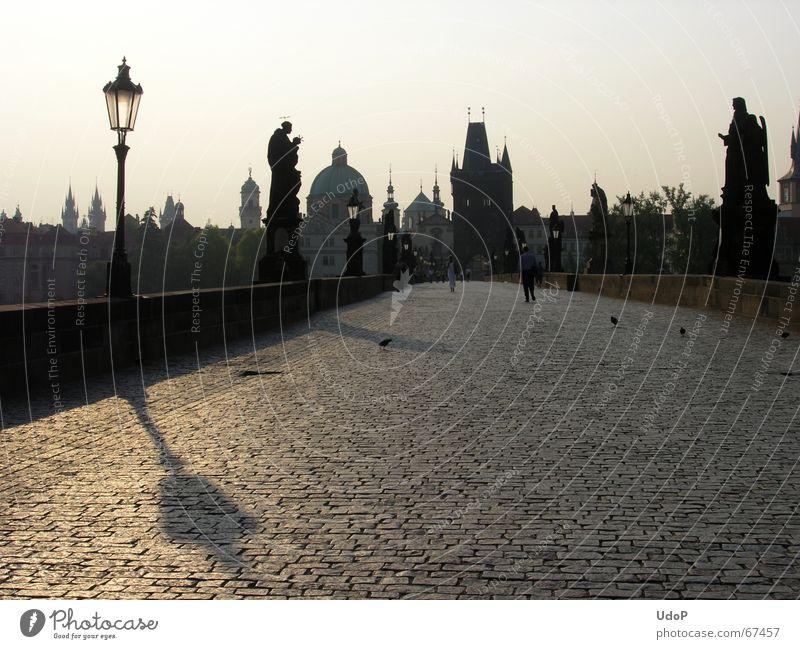 Spitze Aussicht Karlsbrücke Prag Tschechien Dämmerung Sonnenaufgang Laterne Denkmal Stadt Gegenlicht Morgen Turm Schatten Kontrast Brücke Silhouette