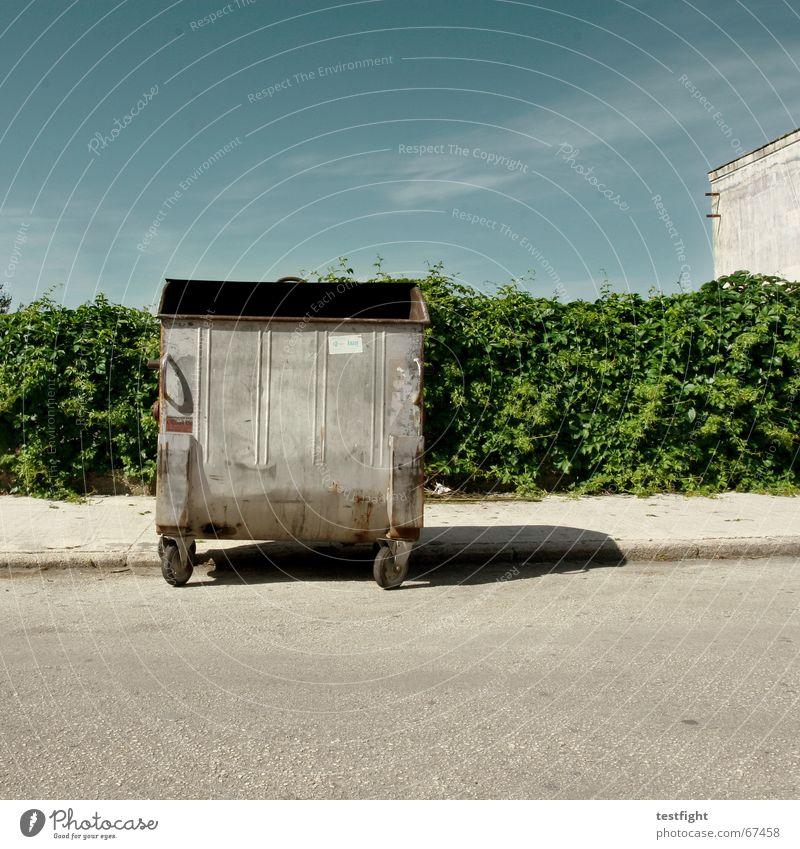 ab in die tonne Himmel Ferien & Urlaub & Reisen Pflanze grün schön Sommer Wolken Straße Wärme Feste & Feiern hell Bürgersteig Müll Physik trashig Hecke