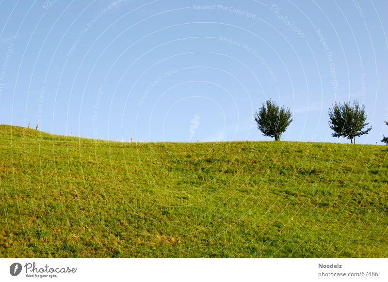 Hill schön Himmel Baum grün blau Ferne dunkel Wiese Freiheit hell Aussicht Hügel saftig azurblau