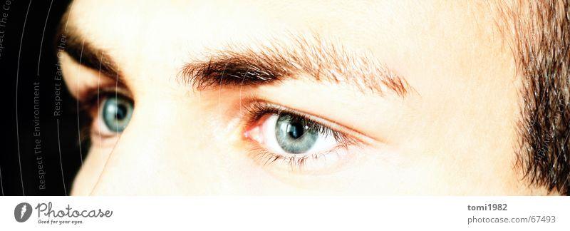 The Face Mensch Gesicht Auge träumen