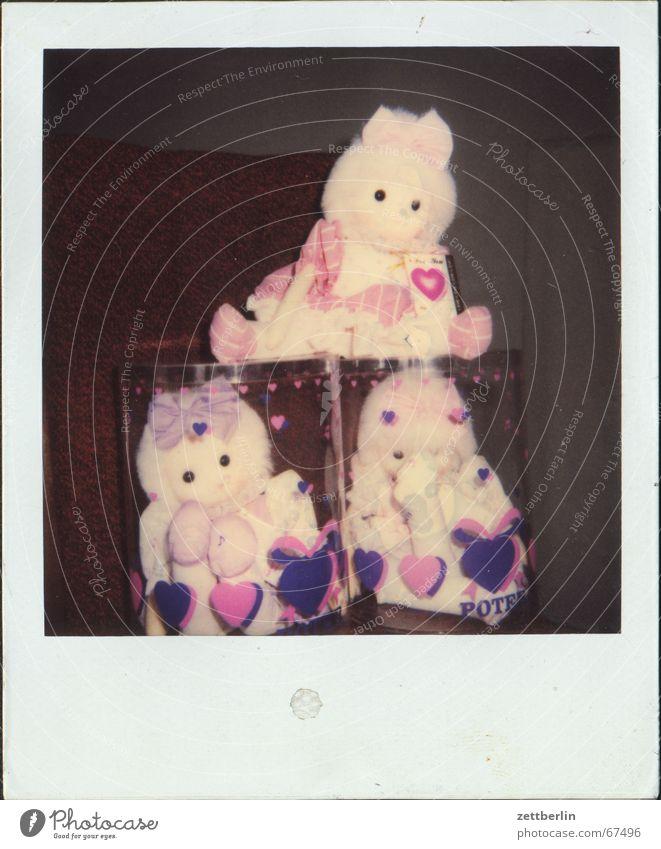 Polaroid V Herz Spielzeug Kindheit Puppe