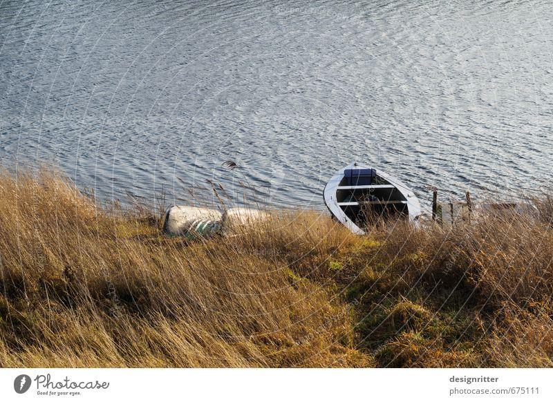 Bereit zum Booten Meer ruhig Küste Gras Schwimmen & Baden Freizeit & Hobby Wellen warten Ausflug fahren Seeufer Gelassenheit Flussufer Schifffahrt Steg Nordsee
