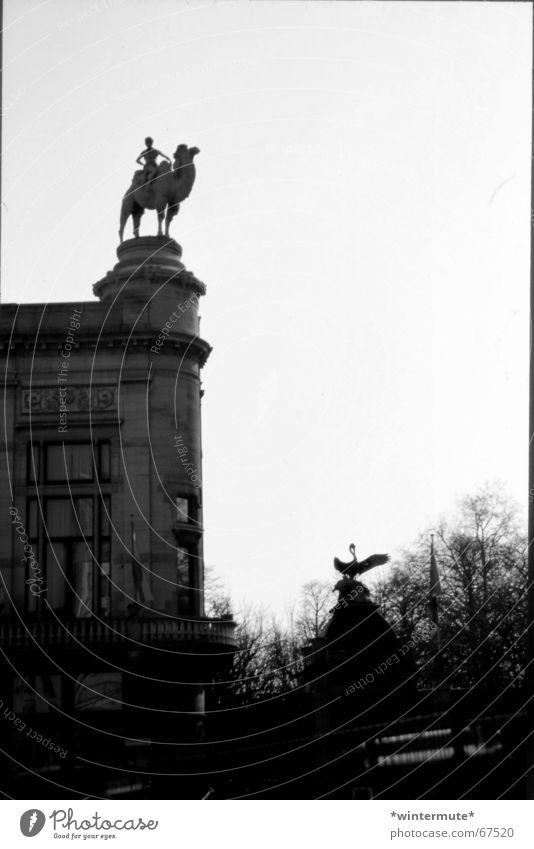 **zoo** Zoo Kamel Belgien Antwerpen Grauwert Am Rand Reiter eingang neben dem bahnhof centraal station Schwarzweißfoto analog und dirty