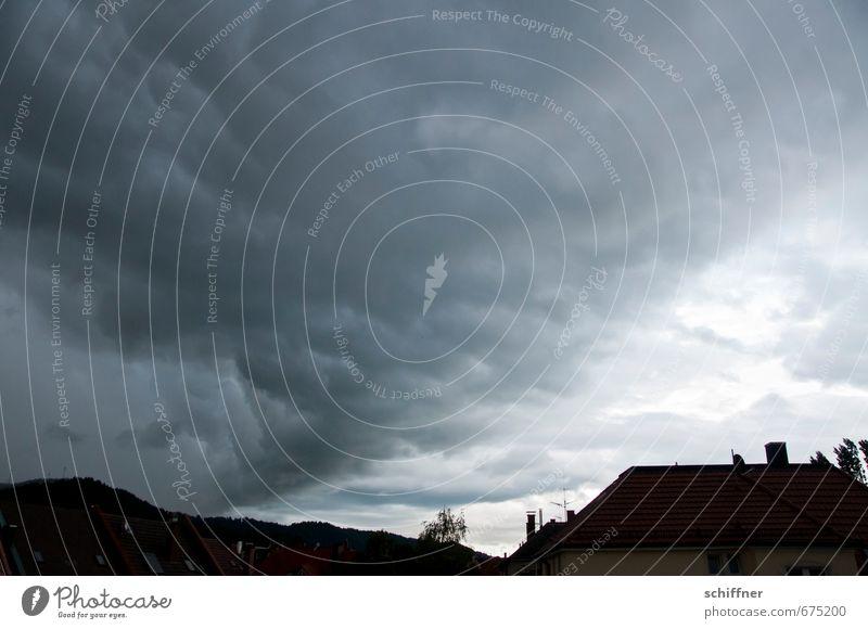 Die Walze Umwelt Landschaft Himmel Wolken Gewitterwolken Klima Klimawandel schlechtes Wetter Unwetter Wind Sturm Regen Pflanze Haus Dach bedrohlich dunkel grau