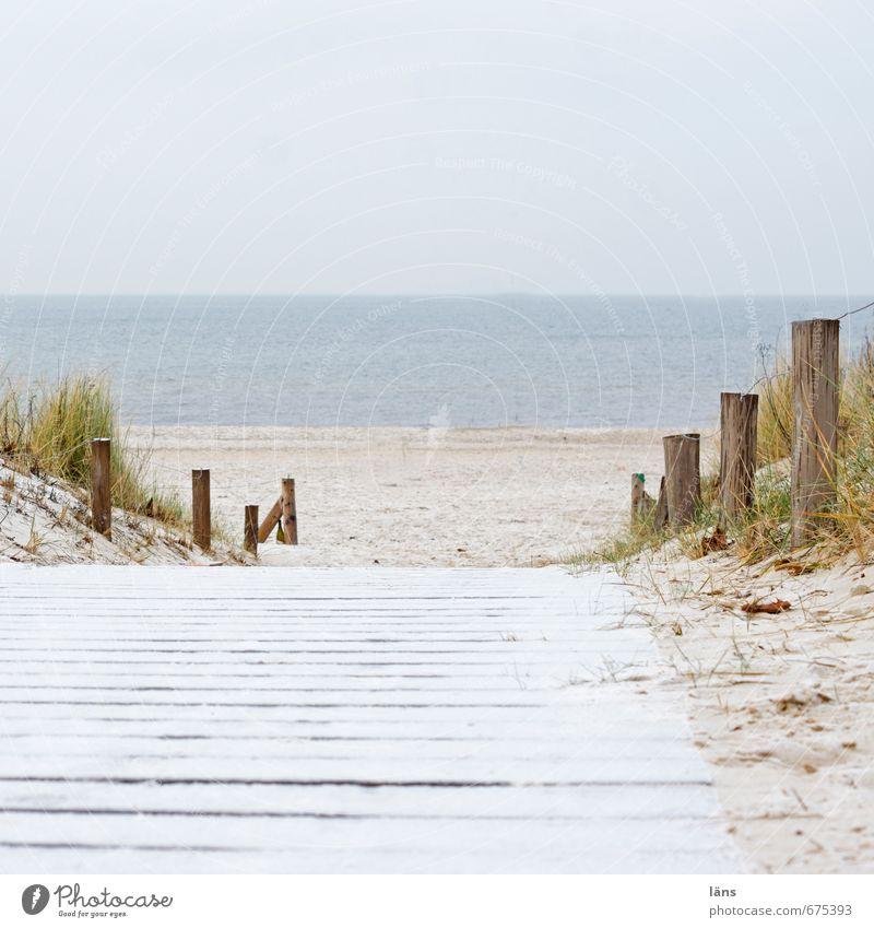 Nebensaison Umwelt Natur Landschaft Urelemente Sand Luft Wasser Himmel Winter Gras Küste Strand Ostsee Meer Ferien & Urlaub & Reisen Gelassenheit Beginn