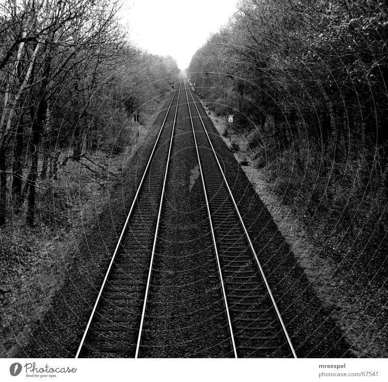 railway Linie Verkehr Eisenbahn Gleise Mittelformat