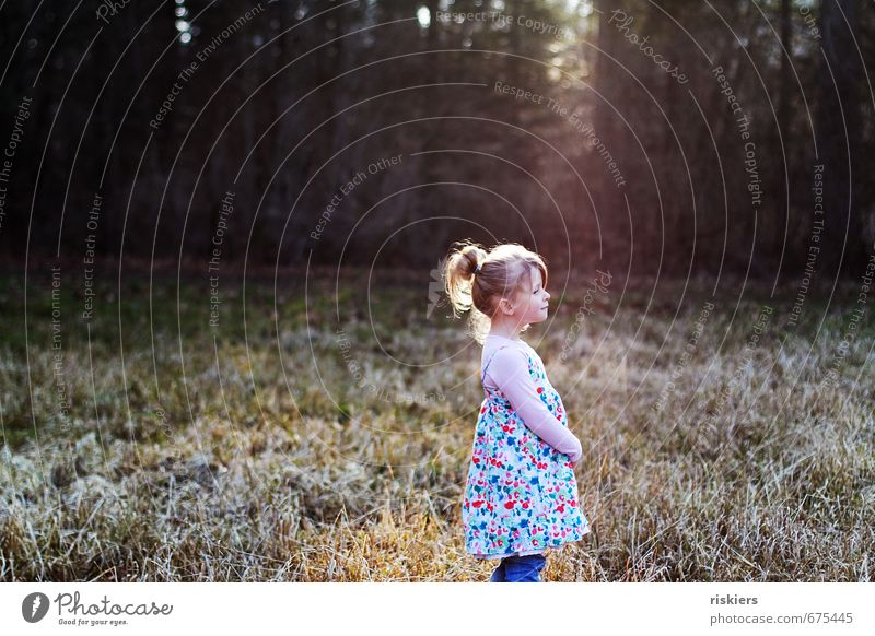 träumen vom frühling Mensch feminin Kind Mädchen Kindheit Leben 1 3-8 Jahre Umwelt Natur Sonnenaufgang Sonnenuntergang Sonnenlicht Frühling Winter