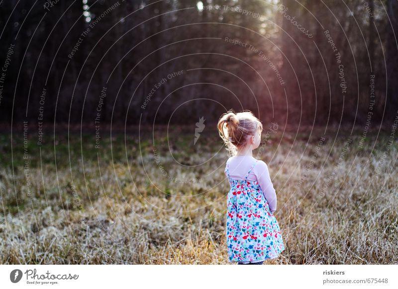 warten auf den frühling Mensch feminin Kind Mädchen Kindheit Leben 1 3-8 Jahre Umwelt Natur Sonne Sonnenaufgang Sonnenuntergang Sonnenlicht Frühling