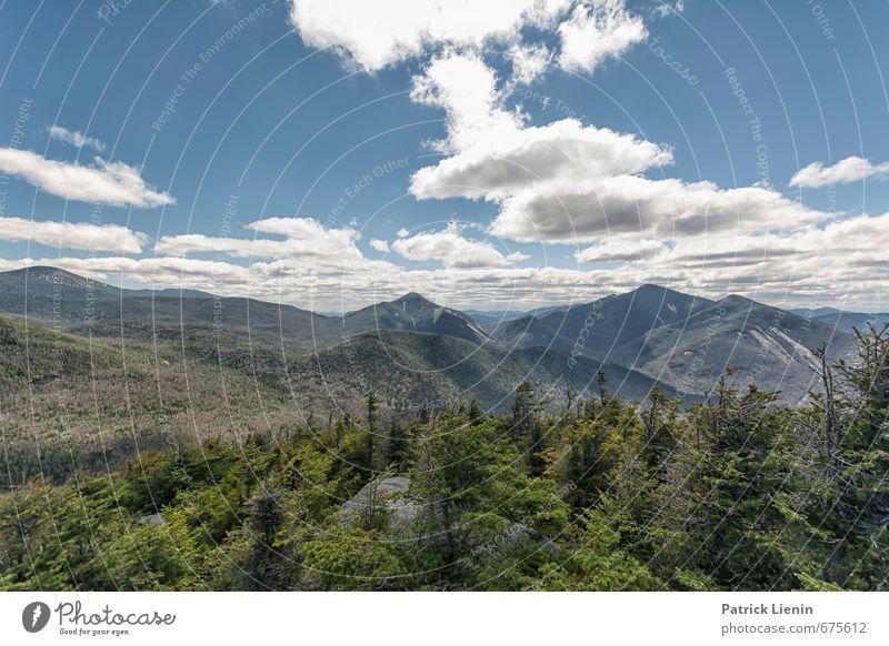 Unterwegs mit Bären Gesundheit Wellness Zufriedenheit Erholung ruhig Ferne Freiheit Umwelt Natur Landschaft Urelemente Himmel Wolken Frühling Sommer Wetter
