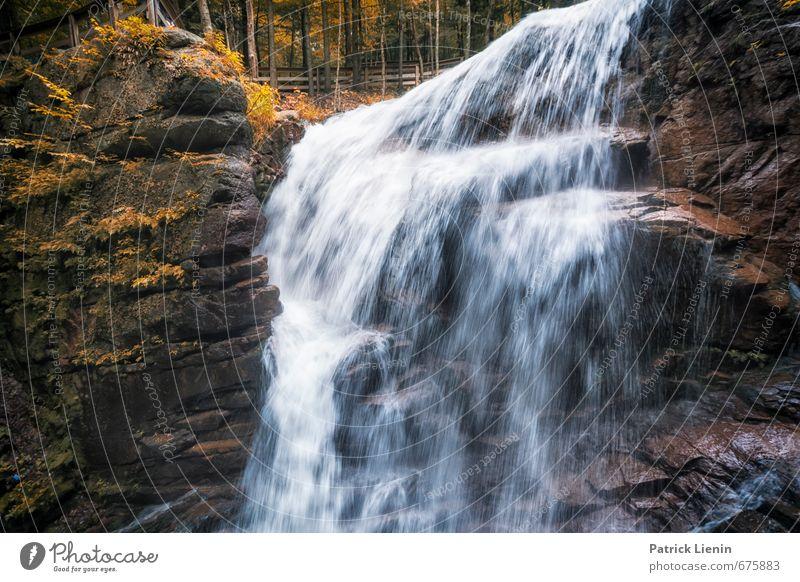 Abkühlung Natur Ferien & Urlaub & Reisen Wasser Pflanze Sommer Einsamkeit Erholung Landschaft ruhig Umwelt Berge u. Gebirge Leben Felsen Zufriedenheit Tourismus