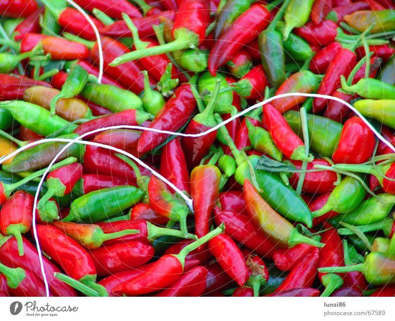 hot! grün rot Scharfer Geschmack Kräuter & Gewürze Gift Chili Gemüse Peperoni Vegetarische Ernährung Würzig