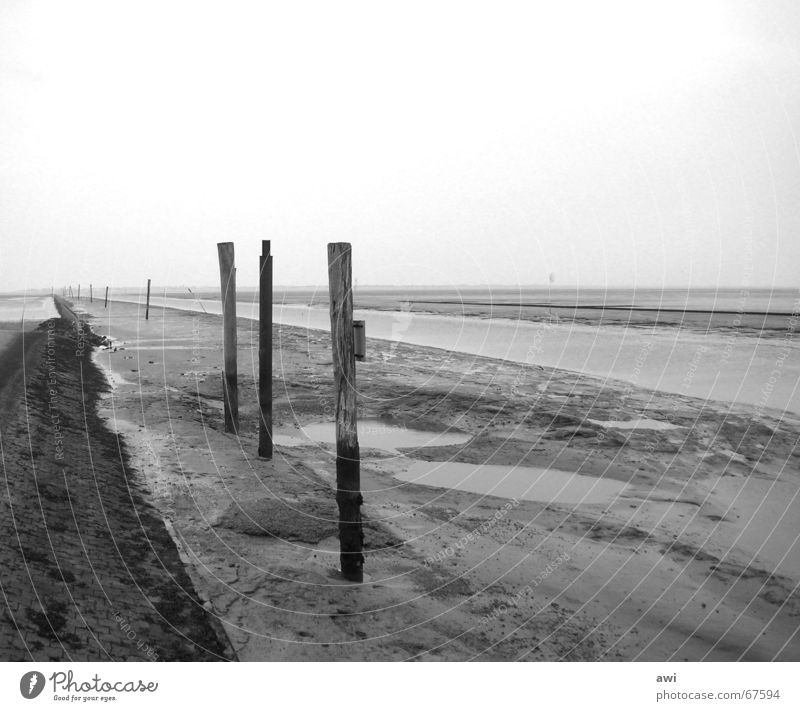 Fahrwasser Wasser Meer Ferien & Urlaub & Reisen Einsamkeit Traurigkeit See Wasserfahrzeug Hafen Schifffahrt Nordsee Wattenmeer Ebbe Buhne Fahrwasser