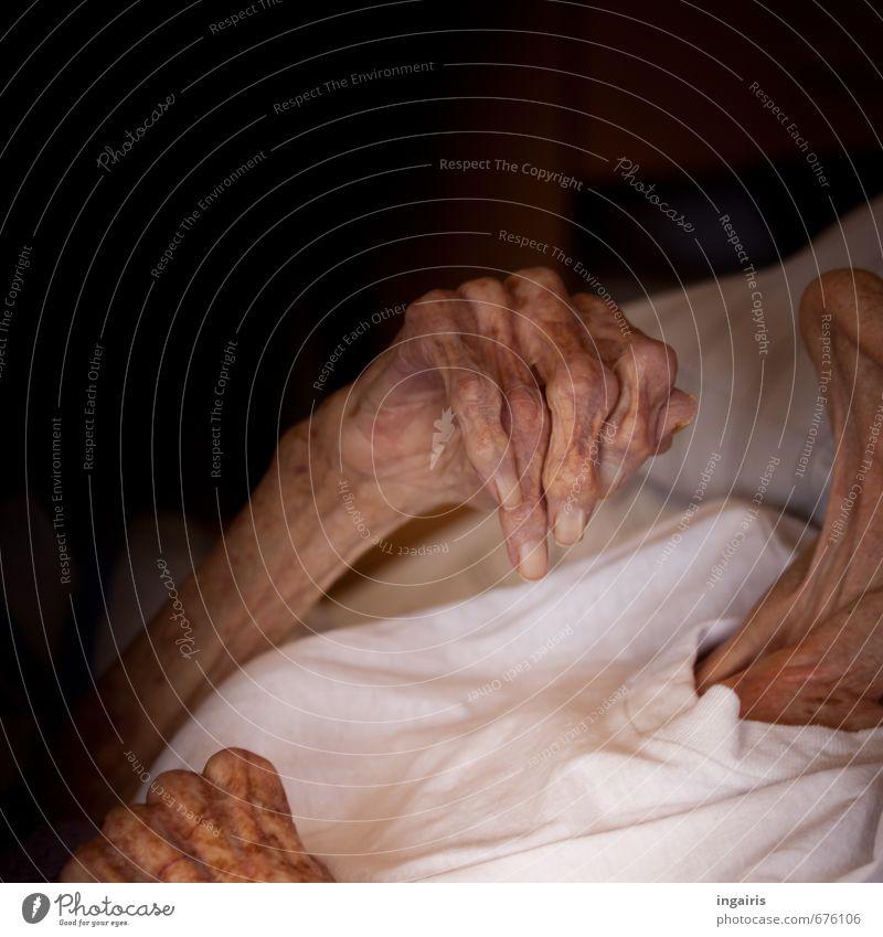 Ehrwürdig Mensch Frau alt Hand Gefühle Senior feminin Tod Zeit Stimmung Arme Haut 60 und älter Vergänglichkeit Hoffnung Weiblicher Senior