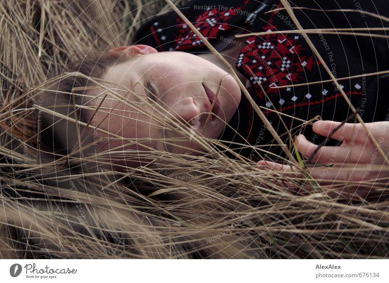 Portrait einer jungen Frau die in langem, gelben Gras liegt Junge Frau Jugendliche Gesicht Hand 18-30 Jahre Erwachsene Sträucher Jacke brünett langhaarig