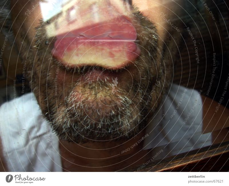Kuss Küssen Oberlippe Unterlippe Kinn Bart Stoppel Glasscheibe räuberhauptmann scheiben schützen Saugnapf