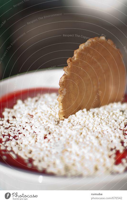 Gelato Lebensmittel Dessert Speiseeis Süßwaren Ernährung Schalen & Schüsseln Essen genießen frisch lecker Zufriedenheit Pause Spaghettieis Spaghetti-Eis Keks