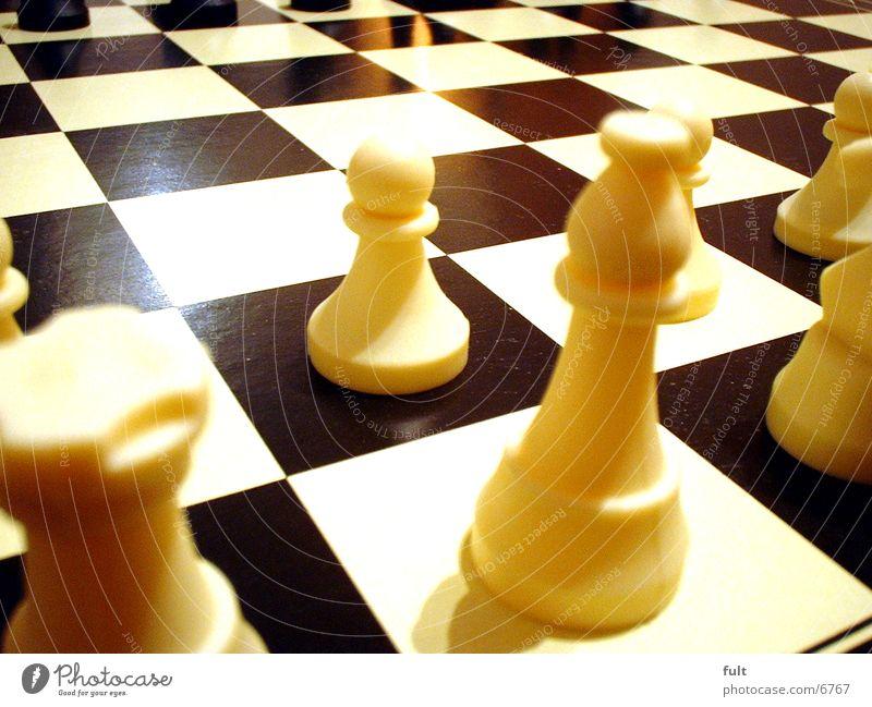 Schach Spielbrett Schachbrett Speil Freude Schachfigur