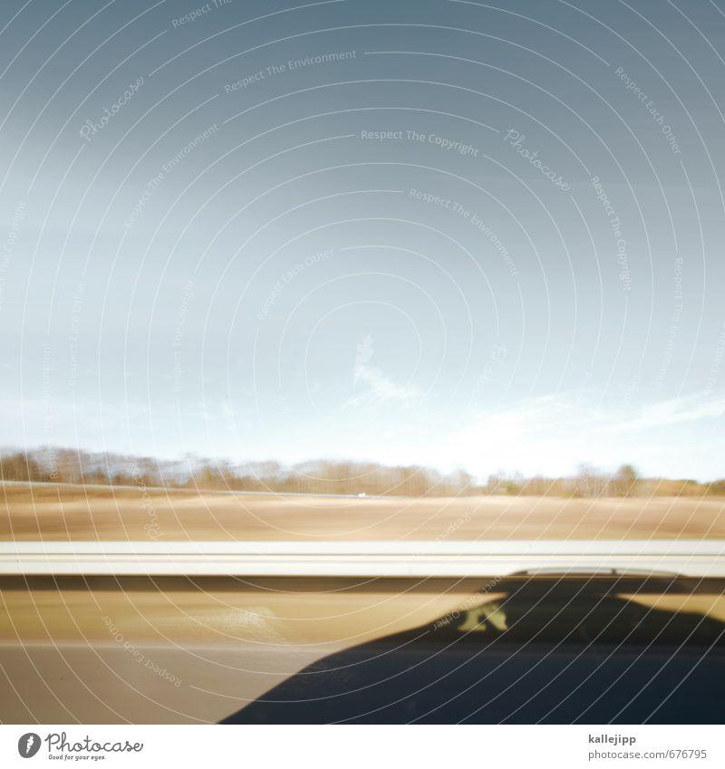 cat driver Katze Himmel (Jenseits) Landschaft Tier Straße PKW Verkehr Geschwindigkeit Güterverkehr & Logistik fahren Verkehrswege Fahrzeug Autobahn Personenverkehr Straßenverkehr Fahrer