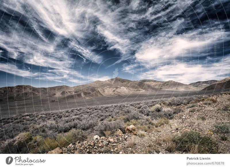 Death Valley Himmel Natur Ferien & Urlaub & Reisen Pflanze Einsamkeit Landschaft Wolken Ferne Berge u. Gebirge Umwelt Gras Sand Felsen Wetter Luft Erde