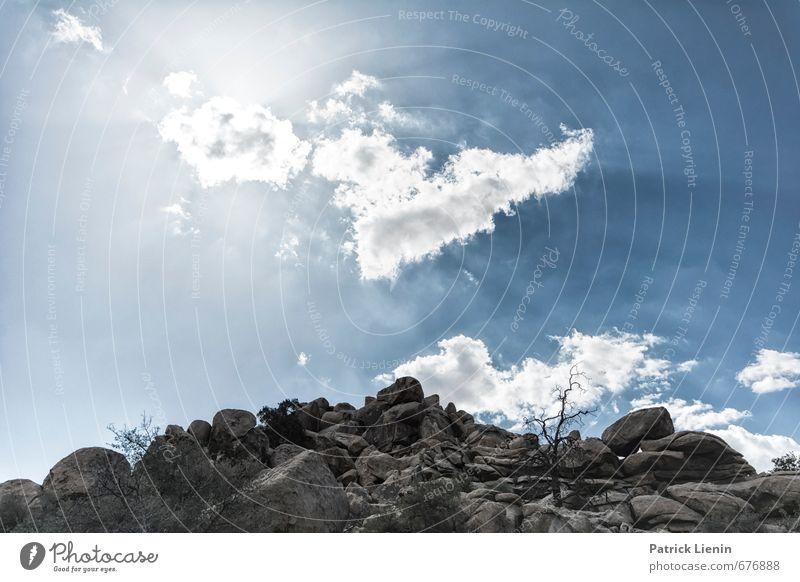 Over the Hills Umwelt Natur Landschaft Urelemente Erde Luft Himmel Wolken Sonne Sonnenlicht Sommer Klima Wetter Schönes Wetter Wärme Dürre Pflanze Baum Hügel