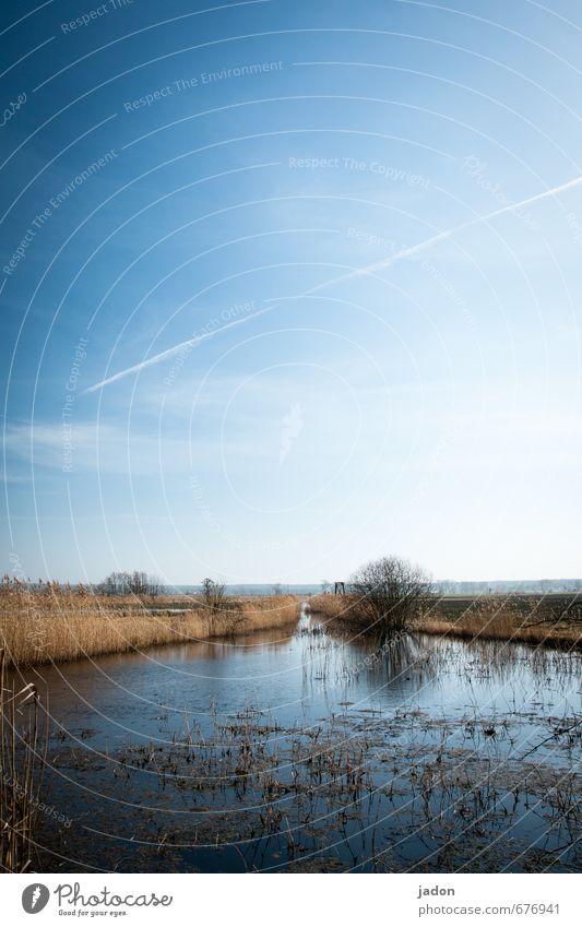wasserreich. Angeln Abenteuer Ferne Landschaft Pflanze Wasser Himmel Horizont Frühling Schönes Wetter Feld Flussufer Bach Flüssigkeit nass blau ruhig Natur