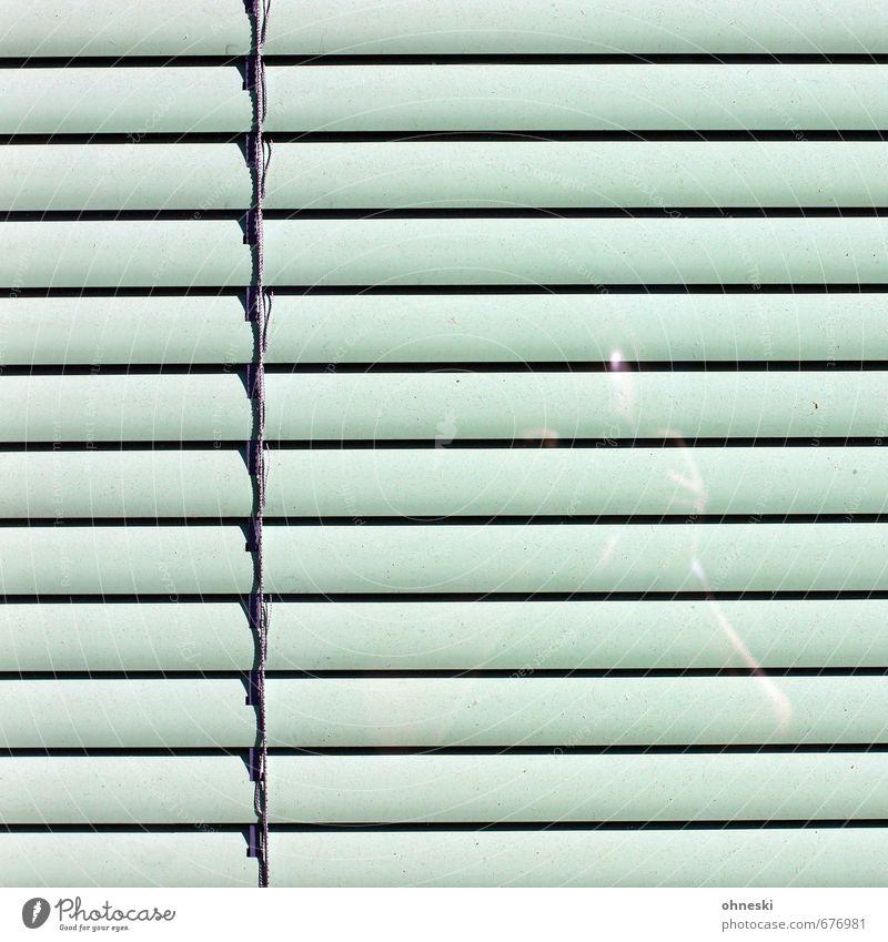 Hinter Gittern Mensch 1 Fassade Fenster Rollladen Glas grün Selbstportrait Farbfoto Gedeckte Farben Außenaufnahme abstrakt Muster Strukturen & Formen
