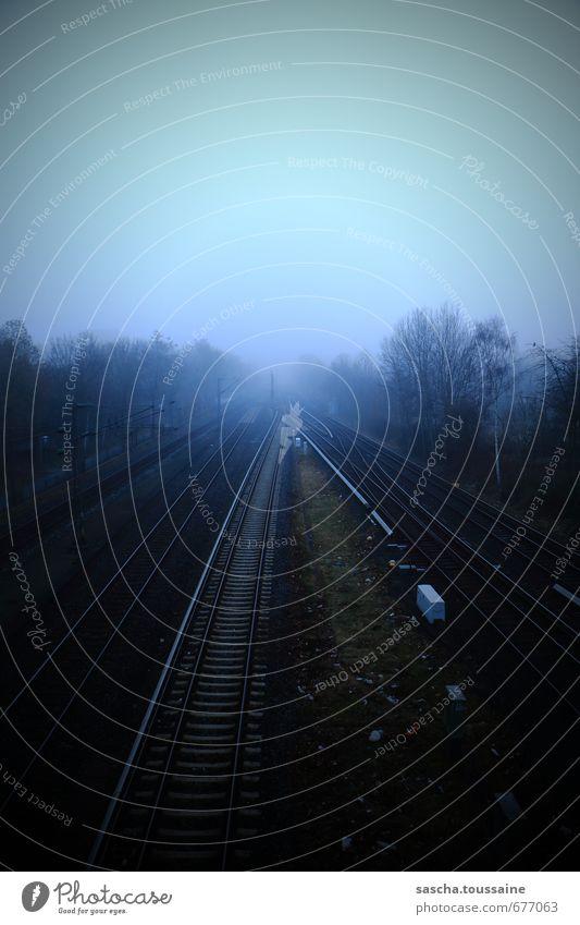 The Fog Stadt Pflanze Baum Einsamkeit Ferne dunkel kalt Herbst Bewegung Tod Frühling Arbeit & Erwerbstätigkeit dreckig Nebel Verkehr beobachten