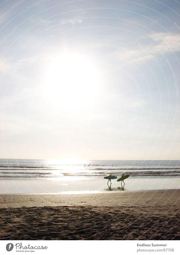 The Endless Summer Wasser Sonne Meer Strand Ferien & Urlaub & Reisen Erholung Freiheit Surfen Mittelamerika
