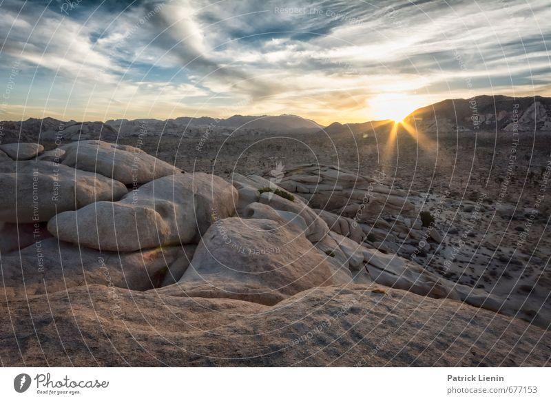 Desert Sunrise Himmel Natur Ferien & Urlaub & Reisen Pflanze Sommer Sonne Landschaft Wolken Ferne Berge u. Gebirge Umwelt Freiheit Felsen Tourismus Luft