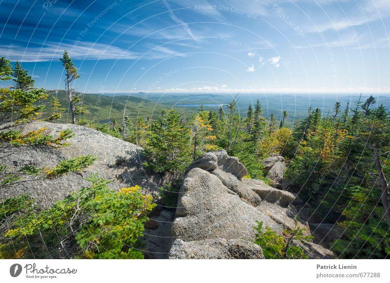 New England Umwelt Natur Landschaft Pflanze Urelemente Luft Himmel Wolken Sonnenlicht Herbst Schönes Wetter Baum Sträucher Wald Hügel Felsen Berge u. Gebirge