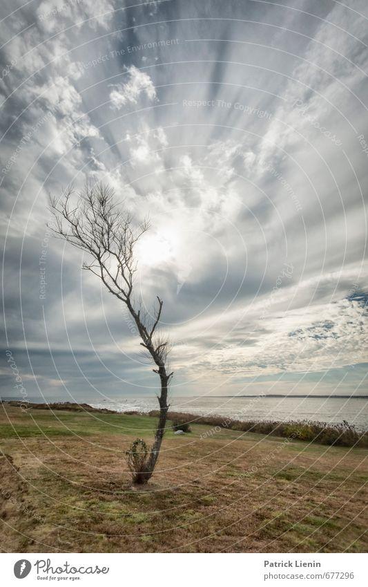 Steife Brise Umwelt Natur Landschaft Urelemente Luft Himmel Wolken Gewitterwolken Sonne Sonnenaufgang Sonnenuntergang Sonnenlicht Frühling Herbst Winter Klima