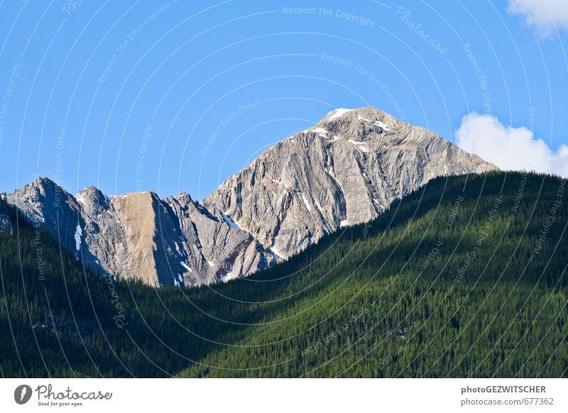 Berg Natur Landschaft Pflanze Himmel Wolken Horizont Sommer Schönes Wetter Baum Berge u. Gebirge Gipfel Stimmung mehrfarbig Außenaufnahme Menschenleer