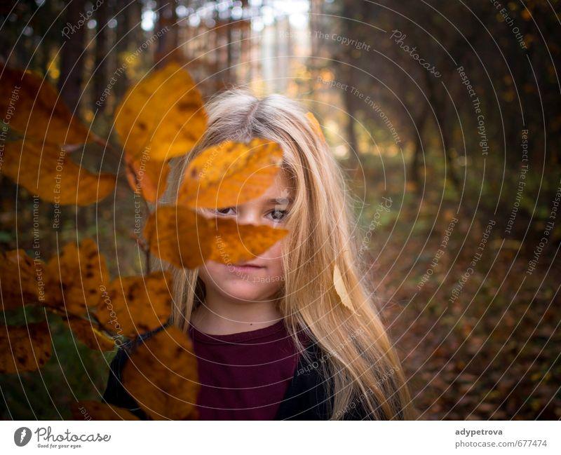 Herbst Mädchen Mensch Kind Körper Haut Kopf Haare & Frisuren Gesicht Auge 1 3-8 Jahre Kindheit Umwelt Natur Landschaft Pflanze Baum Gras Blatt Garten Park Wald