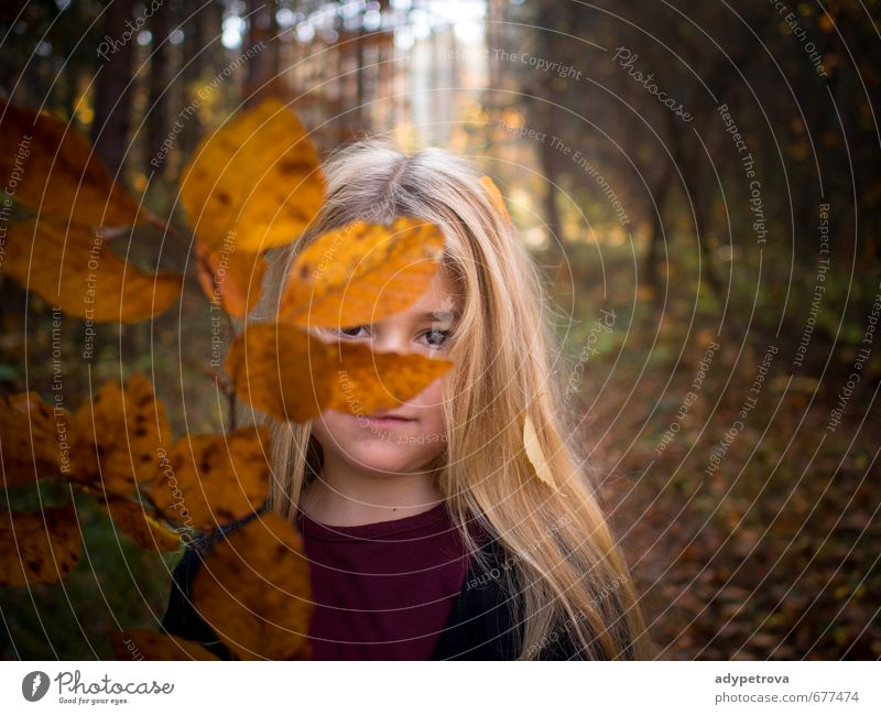 Mensch Kind Natur Pflanze Baum Landschaft Mädchen Blatt Wald Gesicht Umwelt Auge Leben Gefühle Liebe Herbst