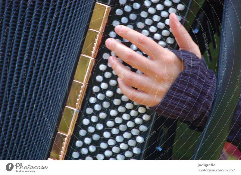 Musik Frau Hand Musik Klang Musikinstrument Rhythmus Akkordeon