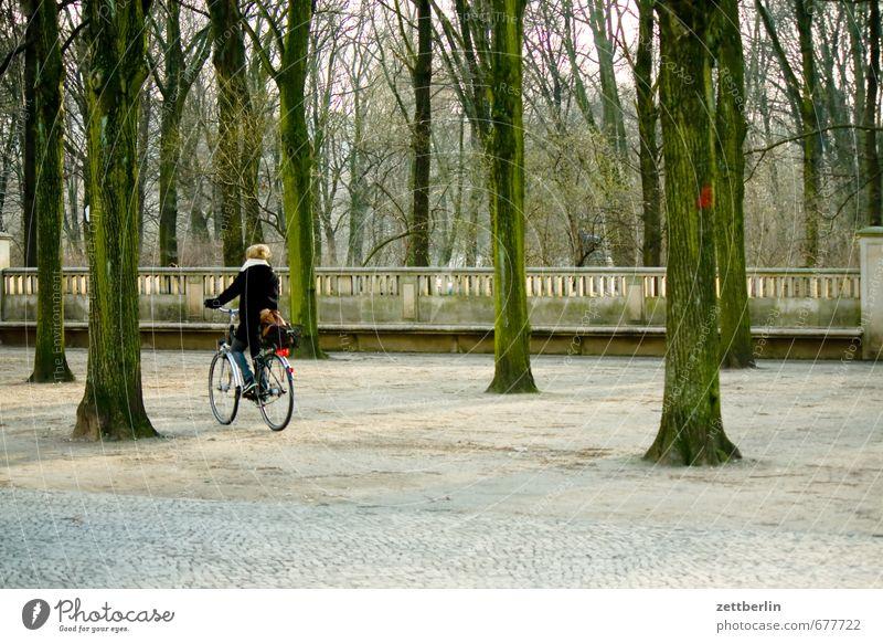 Brandenburger Tor Architektur Berlin Hauptstadt Stadt Stadtleben Wahrzeichen Wald Baum Laubbaum Frühling Fahrrad Fahrradfahren Fahrradtour Wege & Pfade