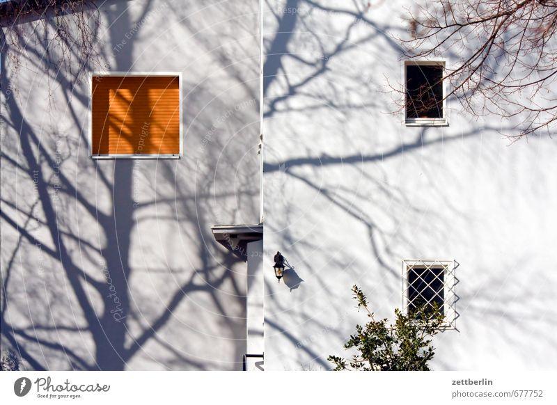 Baum (Schatten) Frühling Garten Haus Wohnhaus Gebäude Architektur Fassade Fenster Baumstamm Ast Zweig Wohngebiet Einfamilienhaus Etage Bauwerk Gitter Jalousie