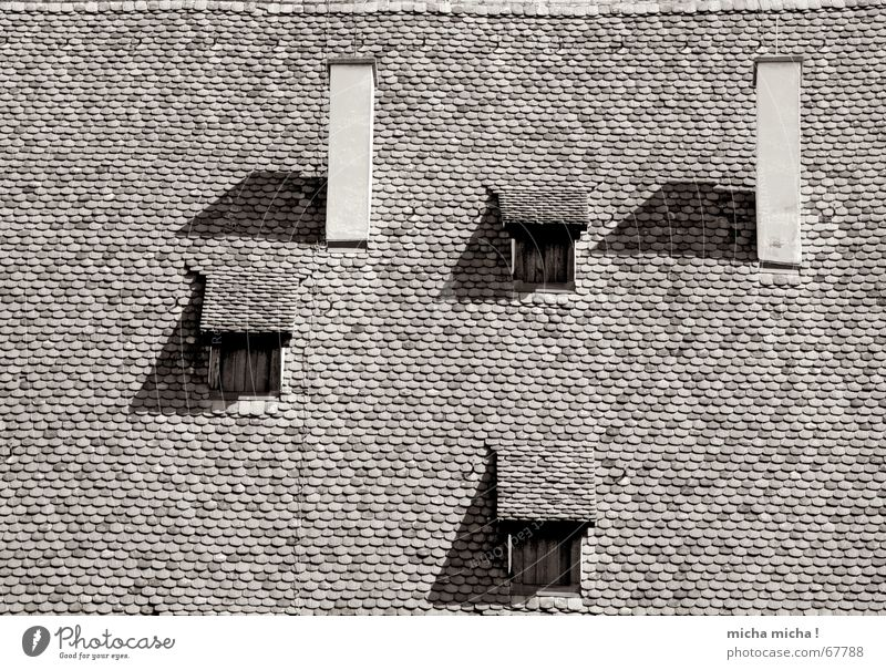 Gucklöcher Fenster Dach Backstein Schornstein Rechteck Dreieck Kloster Kloster Maulbronn