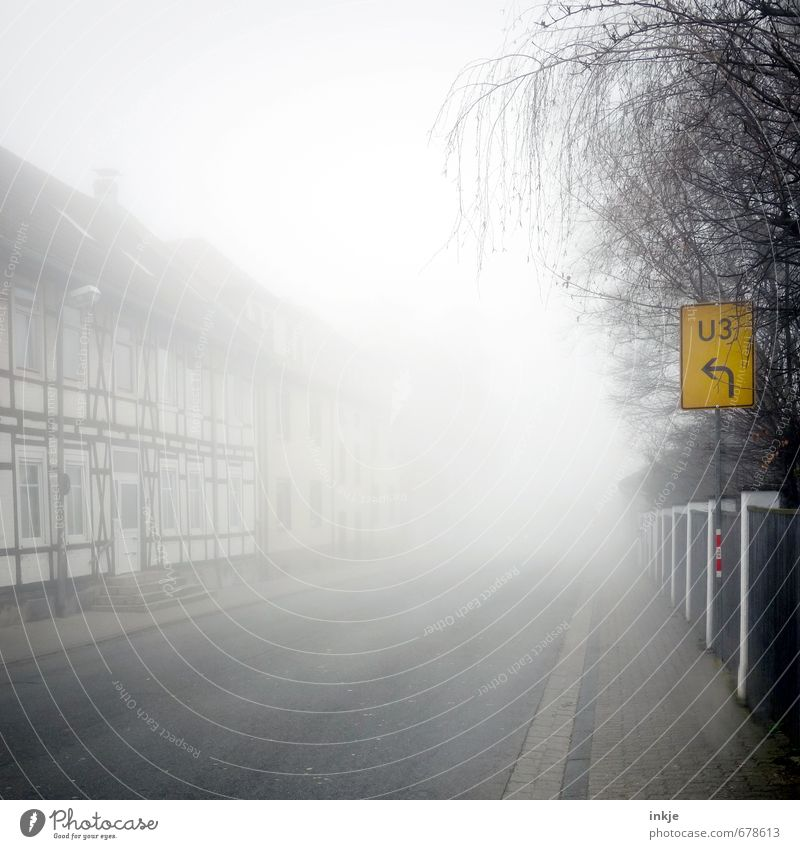 da müssen Sie durch Umwelt Herbst Winter Klima schlechtes Wetter Nebel Baum Kleinstadt Stadt Stadtrand Menschenleer Haus Fachwerkhaus Fachwerkfassade Fassade