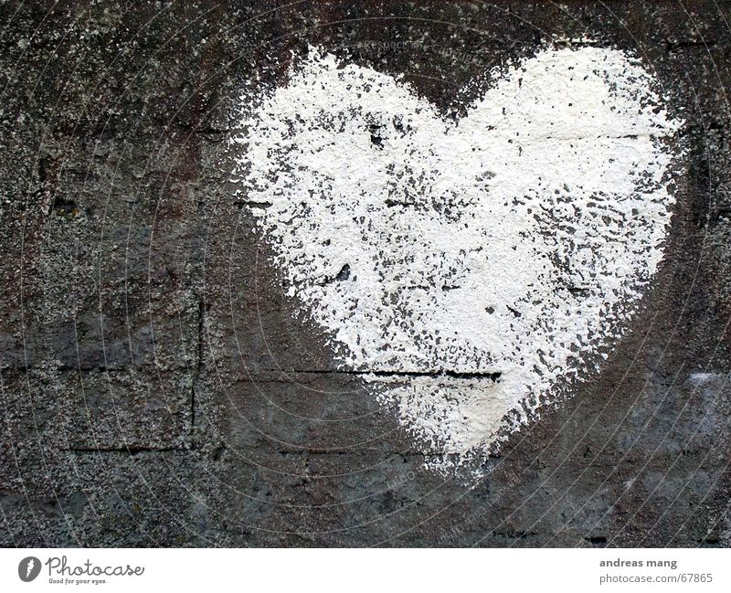 White Heart weiß grau Mauer Liebe Gefühle Romantik Herz heart white grey Stein stone alt Riss old cracks bricks feel romantic rocks young Zeichen sign