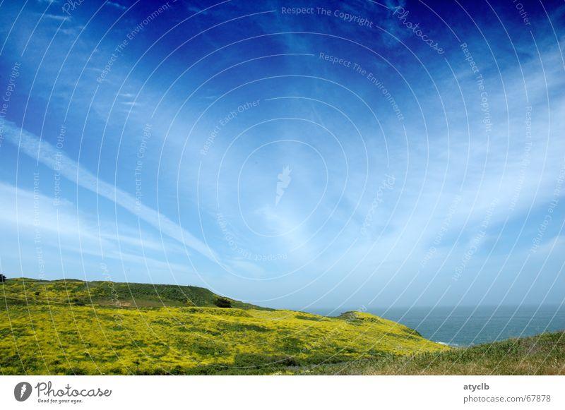 Sea Breeze Himmel Meer grün blau Pflanze Wolken Wiese lang Pazifik