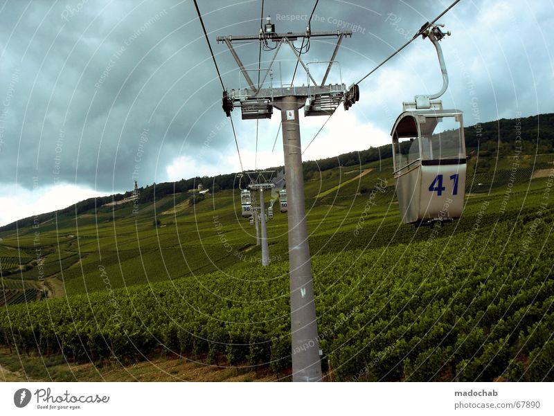 TAGESAUSFLUG INS GLÜCK Schwebebahn Natur Weinberg Rüdesheim Seilbahn Attraktion Aussicht schön Hessen Tourismus Ausflug Ziffern & Zahlen Richtung Himmel