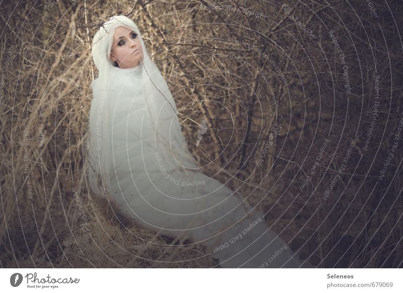 moth Mensch feminin Frau Erwachsene 1 Umwelt Frühling Sträucher Haare & Frisuren weißhaarig langhaarig Perücke Tier Motte Schmetterling Kokon Farbfoto