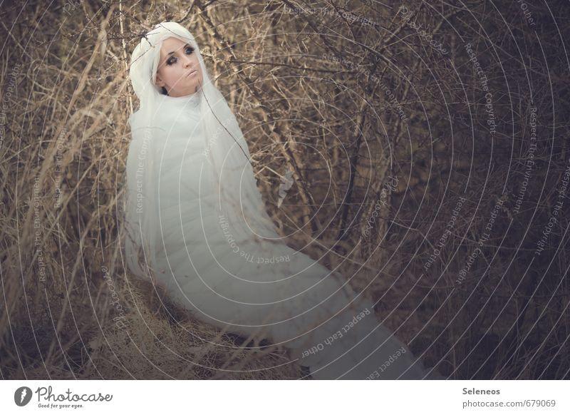 moth Mensch Frau weiß Tier Erwachsene Umwelt feminin Frühling Haare & Frisuren Sträucher Schmetterling langhaarig Motte Perücke weißhaarig Kokon