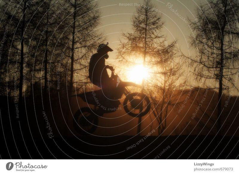Sunrider sportlich Freizeit & Hobby Motocrossmotorrad Sport Motorsport Sportler Motorrad 1 Mensch Natur Sonne Sonnenlicht Baum Helm authentisch braun gold