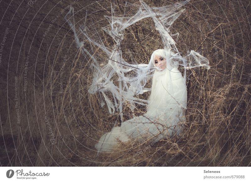 verwickelt sein Mensch Frau Erwachsene 1 Umwelt Natur Frühling Pflanze Sträucher Tier Schmetterling Kokon Spinnennetz weich weiß langhaarig Perücke gewebt