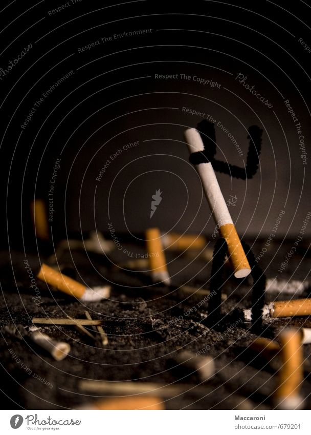 Kampflos geb ich nicht auf! beobachten kämpfen Rauchen Konflikt & Streit warten Aggression Kraft Tod Angst Drogensucht Wut Ärger Feindseligkeit trotzig Rache