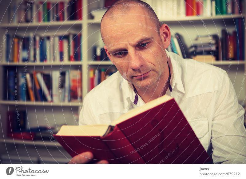 ¿ Mensch Mann Erholung rot ruhig gelb Erwachsene Kopf Freizeit & Hobby lernen lesen Bildung Wohnzimmer Wissen geduldig Bibliothek