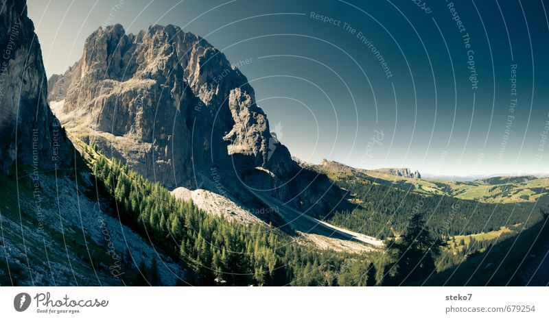 Seiser Alm Wolkenloser Himmel Sommer Schönes Wetter Wald Felsen Alpen Berge u. Gebirge wandern blau grau grün Erholung Horizont Natur Ferien & Urlaub & Reisen
